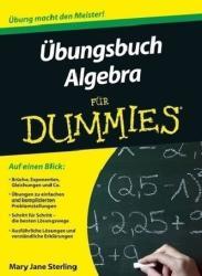 bungsbuch Algebra fr Dummies (2012)