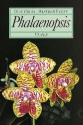Phalaenopsis (1995)