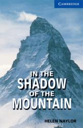 In the Shadow of the Mountain/Level 5 (2011)