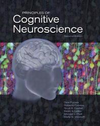 Principles of Cognitive Neuroscience (2013)