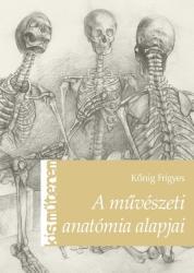 A művészeti anatómia alapjai (2013)
