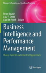 Business Intelligence and Performance Management (2013)