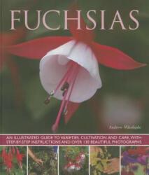 Fuchsias - Andrew Mikolajski (2013)