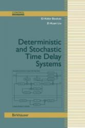 Deterministic and Stochastic Time-Delay Systems (2013)