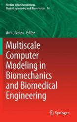 Multiscale Computer Modeling in Biomechanics and Biomedical Engineering (2013)