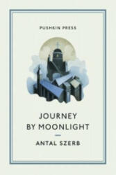 Journey by Moonlight (2013)