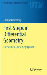 First Steps in Differential Geometry (2013)