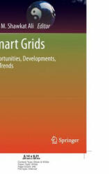 Smart Grids - Opportunities, Developments, and Trends (2013)