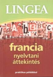 Francia nyelvtani áttekintés (2013)