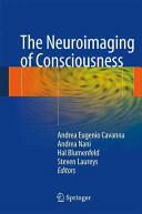 Neuroimaging of Consciousness (2013)