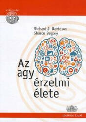 Az agy érzelmi élete (2013)
