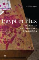 Egypt in Flux: Essays on an Unfinished Revolution - Essays on an Unfinished Revolution (2013)