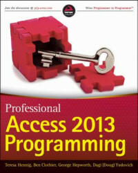 Professional Access 2013 Programming (2013)
