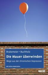 Die Mauer berwinden (2013)