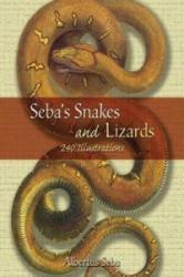 Seba's Snakes and Lizards - Alburtes Seba (2006)