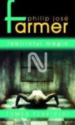 Labirintul magic (ISBN: 9789735699369)