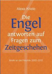 Die Engel Antworten Auf Fragen Zum Zeitgeschehen (2013)