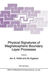 Physical Signatures of Magnetospheric Boundary Layer Processes (2012)