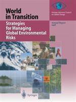 Strategies for Managing Global Environmental Risks - Annual Report 1998 (2012)