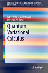 Quantum Variational Calculus (2013)