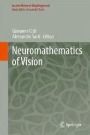 Neuromathematics of Vision (2014)