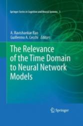 Relevance of the Time Domain to Neural Network Models (2013)