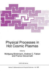 Physical Processes in Hot Cosmic Plasmas (2011)
