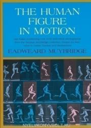 Human Figure in Motion (ISBN: 9780486202044)