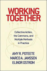 Working Together (ISBN: 9780691146041)