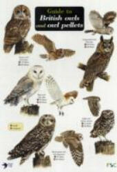 Guide to British Owls and Owl Pellets (2008)