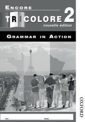 Encore Tricolore Nouvelle 2 Grammar in Action Workbook Pack (2005)
