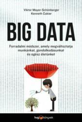 Big data (2014)