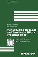 Perturbation Methods and Semilinear Elliptic Problems on R^N (ISBN: 9783764373214)