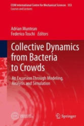 Collective Dynamics from Bacteria to Crowds - An Excursion Through Modeling, Analysis and Simulation (ISBN: 9783709117842)