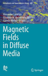 Magnetic Fields in Diffuse Media (ISBN: 9783662446249)