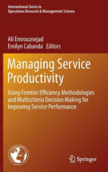Managing Service Productivity - Using Frontier Efficiency Methodologies and Multicriteria Decision Making for Improving Service Performance (ISBN: 9783662434369)