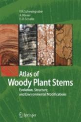 Atlas of Woody Plant Stems: Evolution, Structure, and Environmental Modifications - Evolution, Structure, and Environmental Modifications (ISBN: 9783642436444)