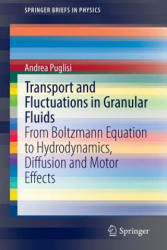 Transport and Fluctuations in Granular Fluids (ISBN: 9783319102856)