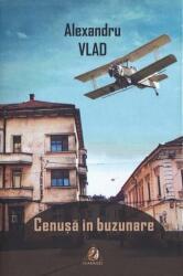 Cenușă în buzunare (ISBN: 9786068513744)