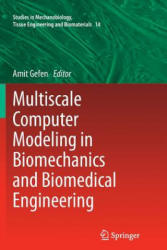 Multiscale Computer Modeling in Biomechanics and Biomedical Engineering (2015)
