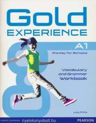 Gold Experience A1 Workbook without key - Lucy Frino (ISBN: 9781447913870)