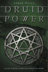 Druid Power: Celtic Faerie Craft & Elemental Magic (ISBN: 9780738705880)