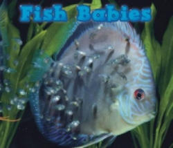Fish Babies (2014)