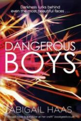 Dangerous Boys - Abigail Haas (2014)