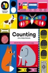 Counting - Aino-Maija Metsola (2015)