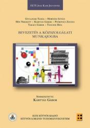 Bevezetés a közszolgálati munkajogba (ISBN: 9789633122228)