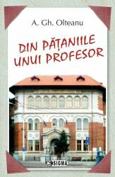 Din pataniile unui profesor (ISBN: 9789736499661)