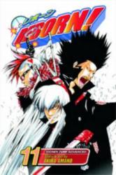 Reborn! , Vol. 11 - Akira Amano (ISBN: 9781421524368)