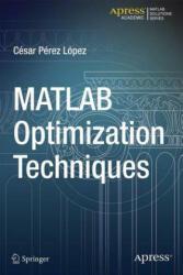 Matlab Optimization Techniques (2014)