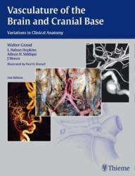 Vasculature of the Brain and Cranial Base - Walter Grand, L. Nelson Hopkins, Adnan H. Siddiqui, J. Mocco (2015)